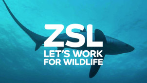 Up to 15% Off Tickets with Online Bookings at London Zoo