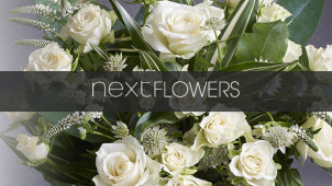 Flowers under £20 at Next Flowers